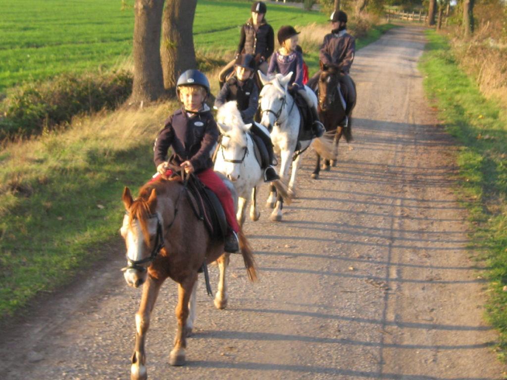 Ausritte Lister Ponyschule