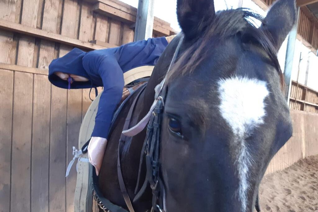 Beritt, Lister Ponyschule