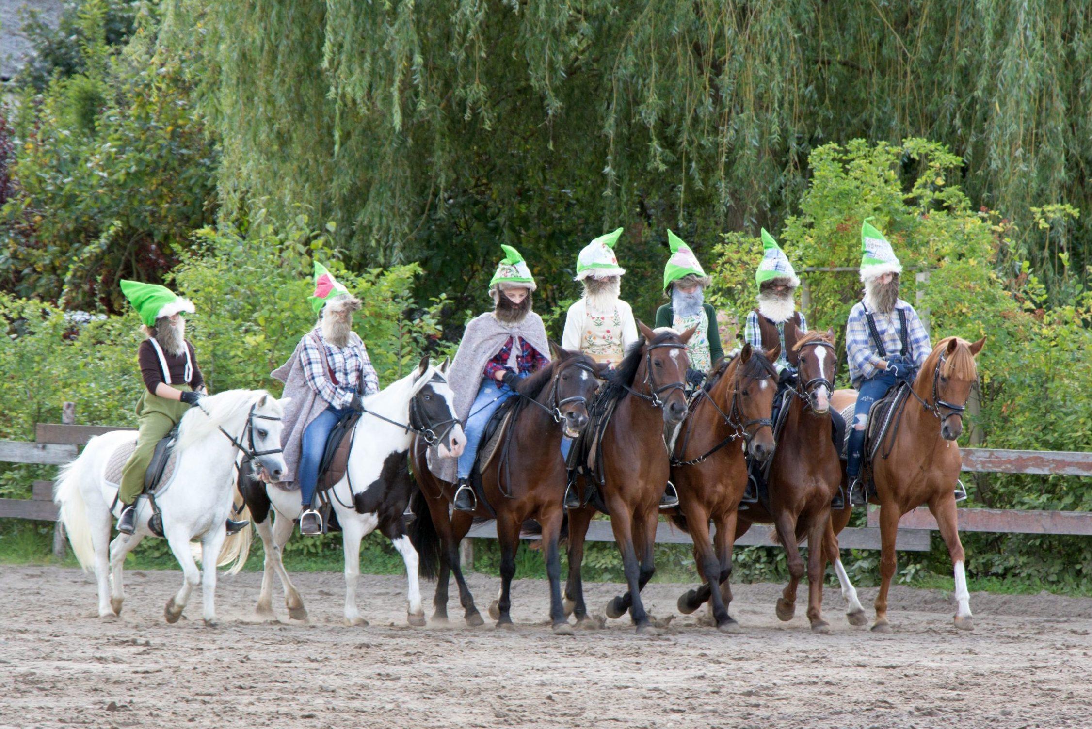 Märchenfest 2017 Lister Ponyschule
