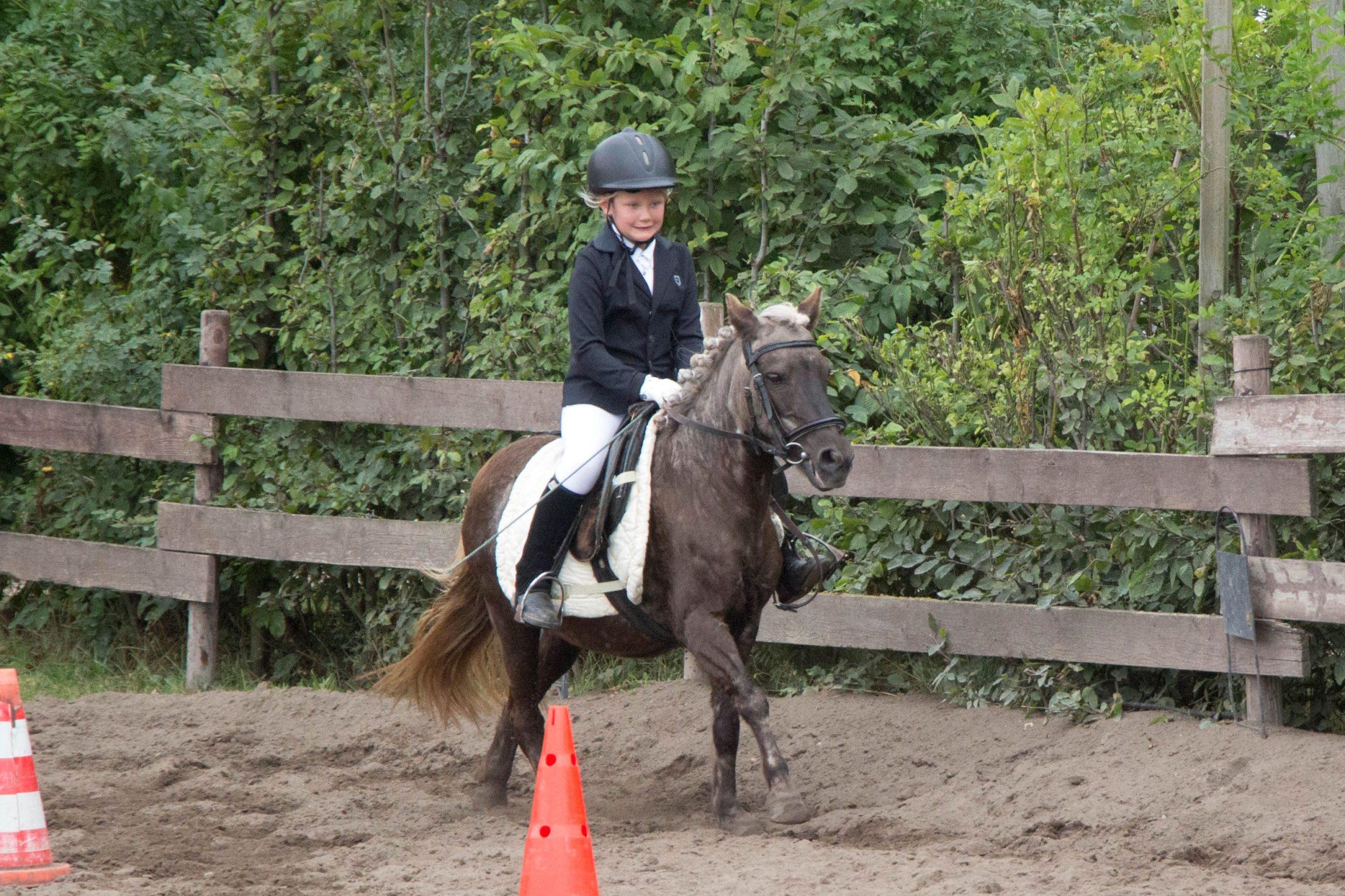 Hausturnier 2020 Lister Ponyschule