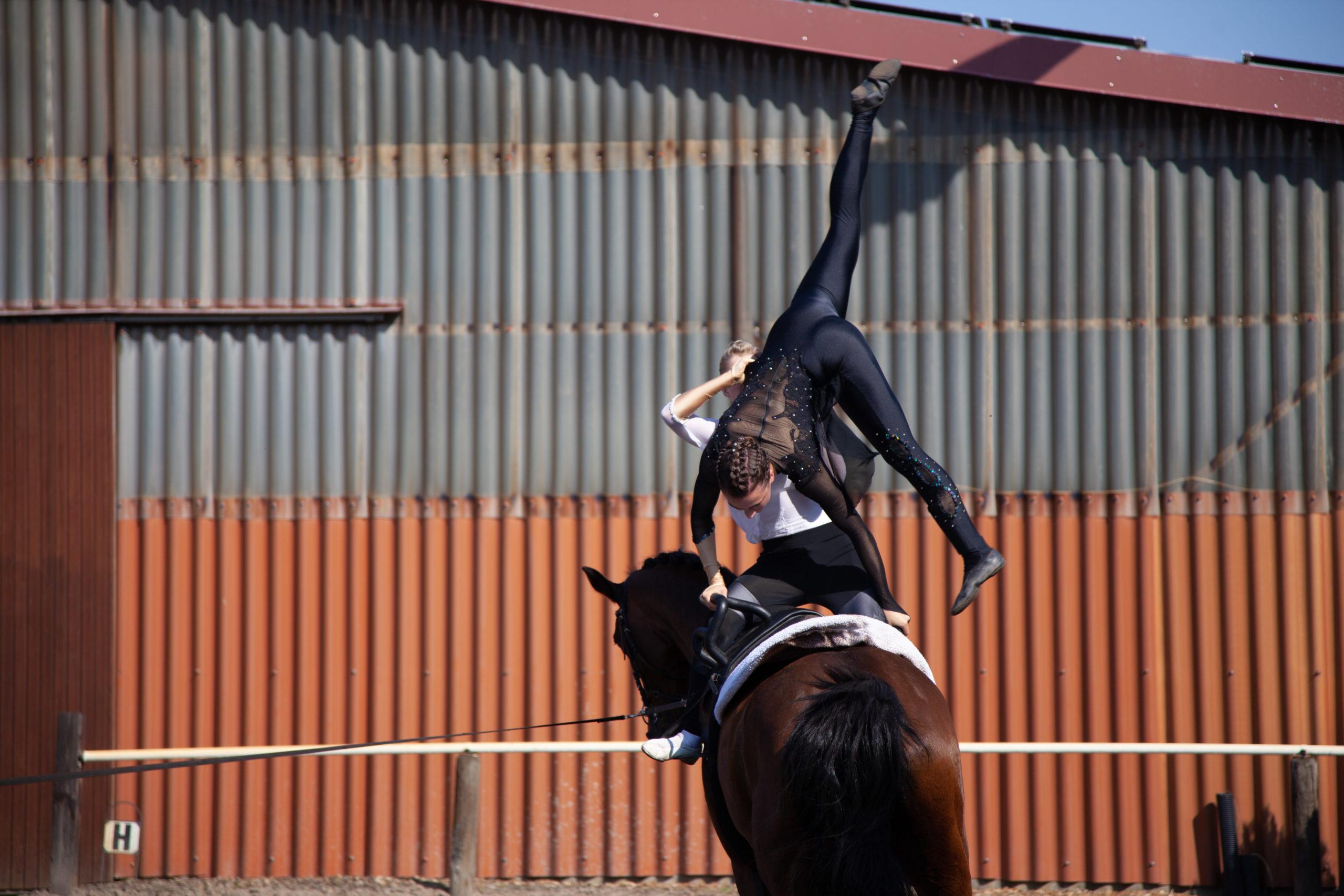 Voltigierunterricht Lister Ponyschule