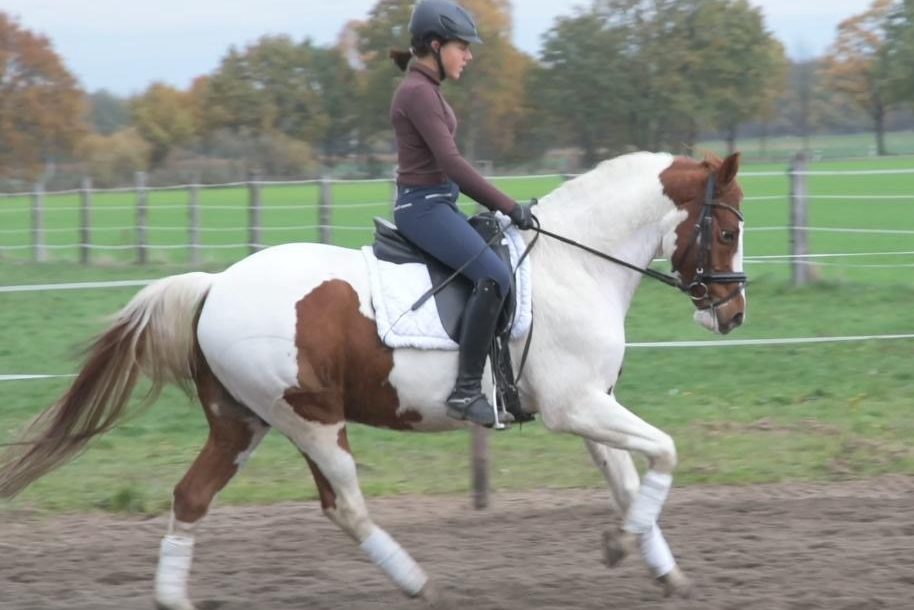 Lilly, Team Lister Ponyschule