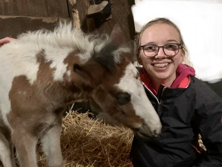 Frida, Team Lister Ponyschule