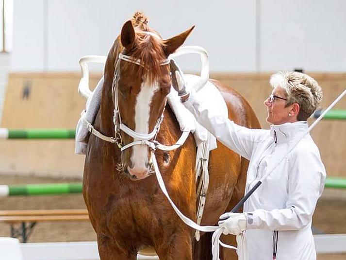Martina, Team Lister Ponyschule